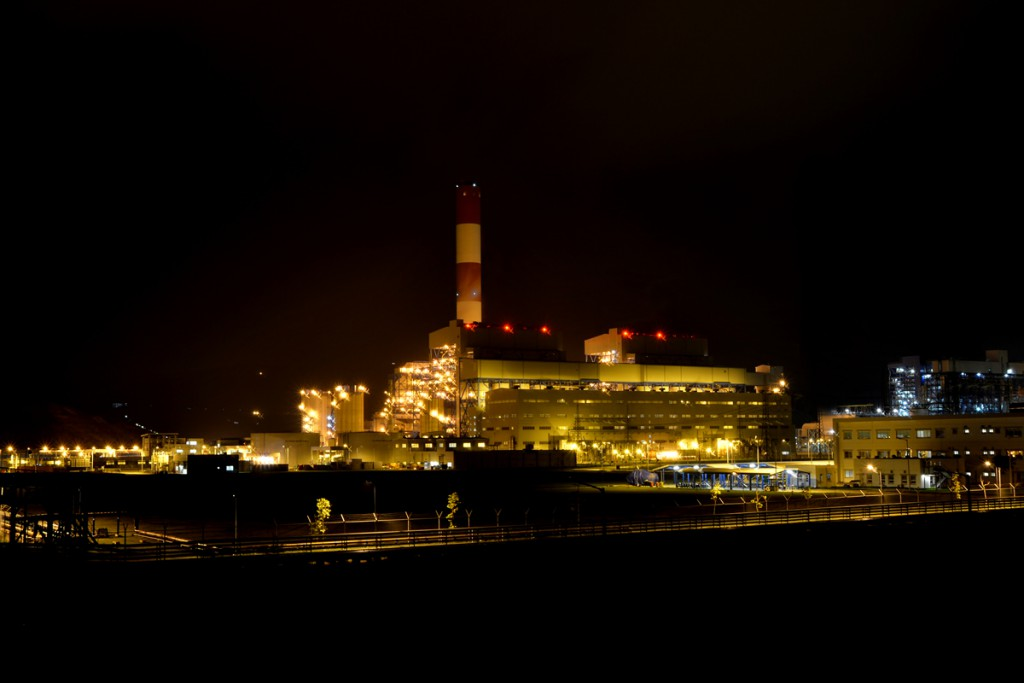 2. MD2 plant night time